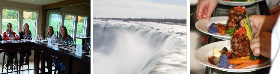 The Falls and Wine Region tour
